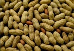 бобы арахиса